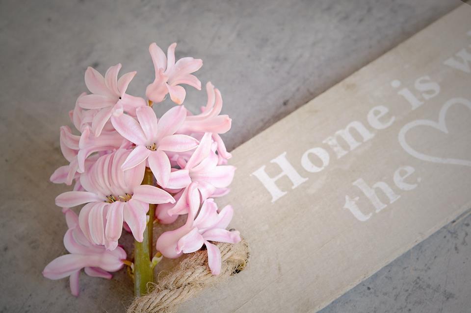 Ingatlan adás-vétel okosan – Home Staging